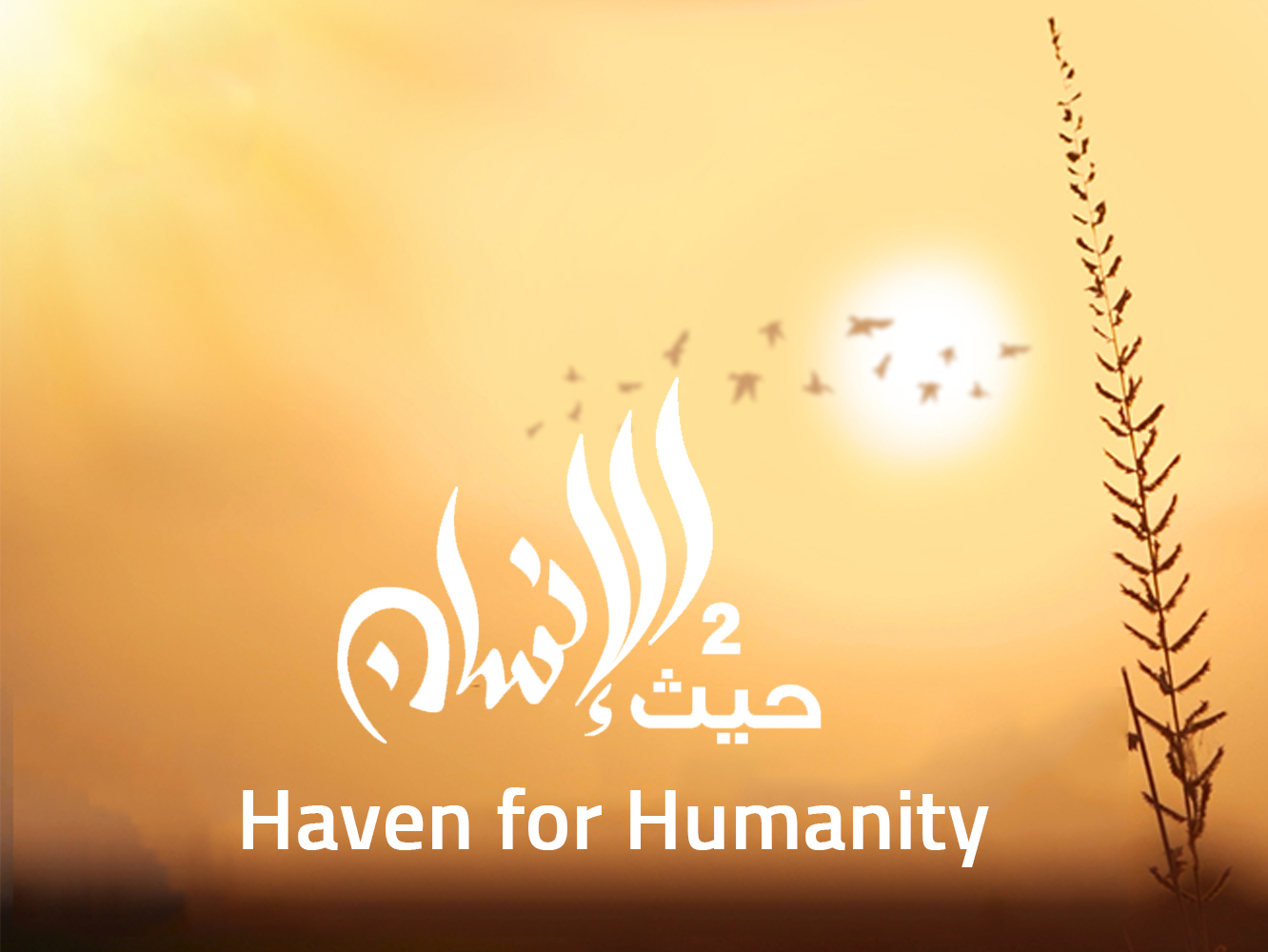 Haven For Humanity 2019